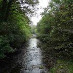 Walk of Leith