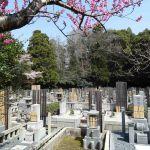 Japanse begraafplaats