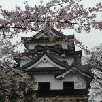 Hakone castle