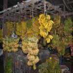 Bananenmarkt in Sittwe