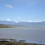 Laguna Nimez reserve (bij El Calafate)