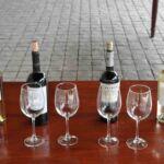 Undurraga wijngaard vlakbij Santiago de ChileUndurraga wijngaard