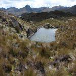 NP Cajas (vlakbij Cuenca)